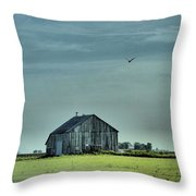 The Flight Home Throw Pillow by Dan Sproul