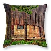 Barnyard 2 Throw Pillow