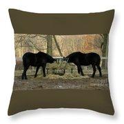 Barnyard Beauties Throw Pillow