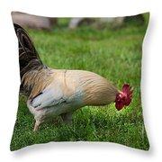 Barnyard Rooster 2 Throw Pillow
