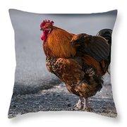 Barnyard Rooster Throw Pillow