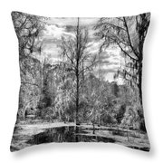 Barr Hammock Preserve  Throw Pillow