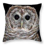 Barred Owl 3 Throw Pillow