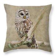 Barred Owl Portrait Throw Pillow