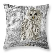 Barred Owl Snowy Day In The Forest Throw Pillow by Jennie Marie Schell