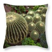 Barrel Cacti Throw Pillow