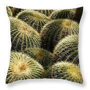 Barrel Cacti Throw Pillow