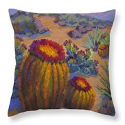 Barrel Cactus In Warm Light Throw Pillow