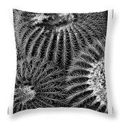 Barrel Cactus Poster Throw Pillow
