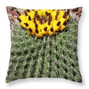 Barrel Cactus With Yellow Fruit Throw Pillow