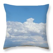 Barren Horizon Throw Pillow