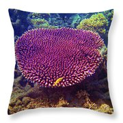 Barrier Reef Coral II Throw Pillow