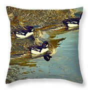 Barrow's Goldeneyes Going For The Gold Throw Pillow