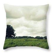 Bartow Highway Throw Pillow