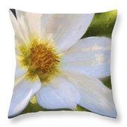 Bartram Bee Flying Throw Pillow