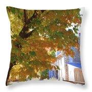 Bartram Orange Throw Pillow