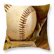 Baseball Has Been Very Good To Me Throw Pillow by Don Schwartz