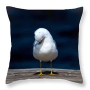 Bashful Seagull  Throw Pillow