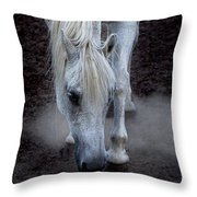 Basic Instincts Throw Pillow