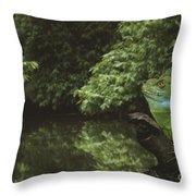 Basilisk Lizard Throw Pillow
