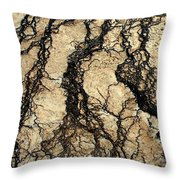 Basin Water Runoff Throw Pillow