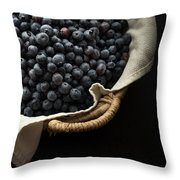 Basket Full Fresh Picked Blueberries Throw Pillow by Edward Fielding