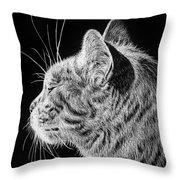 Basking II Throw Pillow