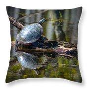 Basking Turtle Throw Pillow