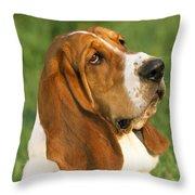 Basset Hound Dog Throw Pillow
