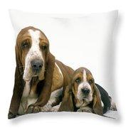 Basset Hound Dogs Throw Pillow