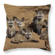 Bat-eared Fox Pups Throw Pillow