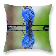 Bath Time Reflection Throw Pillow