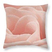 Bath Time Rose Soap Macro Throw Pillow