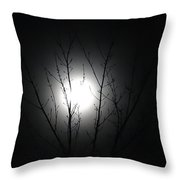 Bathed In Moonlight Throw Pillow