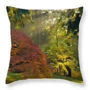 Bathed In Morning Light Throw Pillow