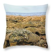 Sabellariid Worm Reef  Throw Pillow