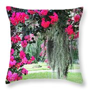 Baton Rouge Louisiana Crepe Myrtle And Moss At Capitol Park Throw Pillow
