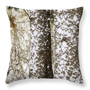 Battered By Winter Blizzard Throw Pillow