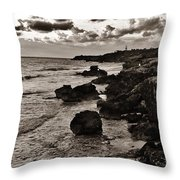 Battered Shore Throw Pillow
