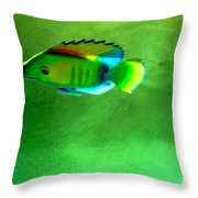 Battery Operated Fish Throw Pillow