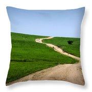 Battle Creek Road Teamwork Throw Pillow