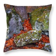 Battlefield In Fall Colors Throw Pillow
