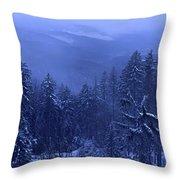 Bavarian Forest In Winter Throw Pillow by Ulrich Kunst And Bettina Scheidulin
