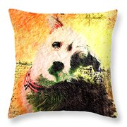 Baxter Throw Pillow by Kevyn Bashore