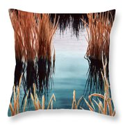 Bay At Sunset Throw Pillow