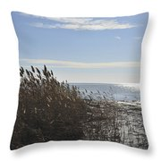 Bay Breeze In Winter Throw Pillow