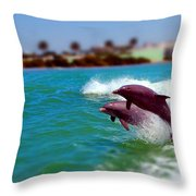 Bay Dolphins Throw Pillow