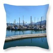 Bay In Seward Alaska Throw Pillow