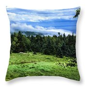 Bay Of Fundy From Fundy National Park Throw Pillow