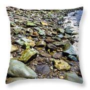 Bay Of Fundy Shoreline Throw Pillow